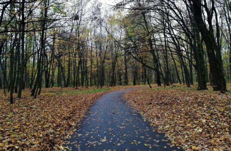 Карантин вихідного дня: ідеї для прогулянок на свіжому повітрі у Києві